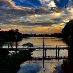 Mais um dia lindo! Foto de @aro.pires #londrinando #londrina #parana  Snap: londrinando