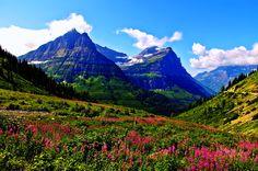 Terra/Natureza Landscape  Mountain Spring Earth Nature Flower Papel de Parede