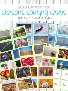 Montessori Inspired Seasons sorting or classification cards for learning about the seasons of the year! #montessori, #preschool, #montessoriactivities