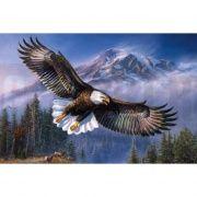 """B-0077 Алмазная живопись"""" Белоголовый орёл"""" (набор) 40х50 см"""