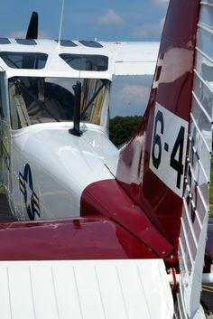 1959 Cessna L-19E 305F Bird Dog