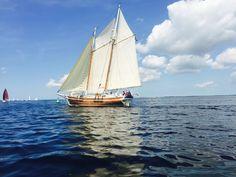 """Shpountz """"Drum of Drake"""" Best Boats, Sail Away, Wooden Boats, Tall Ships, Sailing Ships, Drake, Nautical, Sail Boats, Sea"""