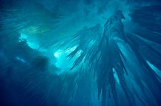Icicles hanging from inside a crevasse in a glacier. Adelaide Island, Antarctica
