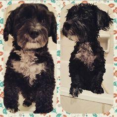 Cathy banyo öncesi ve sonrası