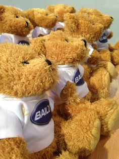 The exclusive Bailey Bears line up waiting for their new owners to claim them once they have found the clues on the Bailey Bear Treasure Hunt. Fun Activities, Bears, Waiting, Teddy Bear, Short I Activities, Fun Crafts, Bear