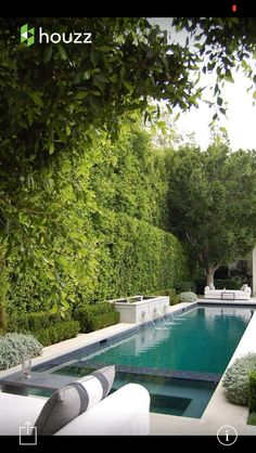 Narrow pool with spa and water feature. House of Arch Pool. Narrow pool with spa and water feature. House of Arch Langer Pool, Piscina Rectangular, Rectangular Pool, Garden Hedges, Pool Landscape Design, Modern Pools, Modern Pool And Spa, Small Pools, Small Swimming Pools