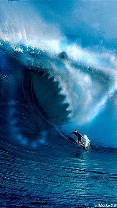 Surfing with the sharks!  Animated GIF
