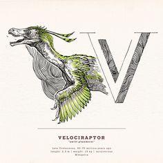 Dino-Alphabet (Theropoda) part 2 on Behance