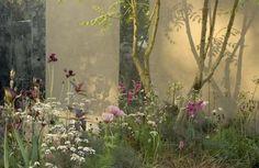 Charlottes Garden Scrap Book: Sarah Price Chelsea 2007 Plant Design, Garden Design, Modern Planting, Lush Beauty, Prairie Garden, Colorful Garden, Flowers Nature, Garden Inspiration, Garden Plants