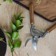 Good news for gardeners: wood-handled French pruners from Le Prince Jardinier, created by French aristocrat and famously fussy gardener Louis Albert de Bro Garden Crafts, Garden Tools, Prince, Home Tools, Tool Sheds, Interior Garden, Wooden Garden, Flowers Perennials, Gardening Supplies