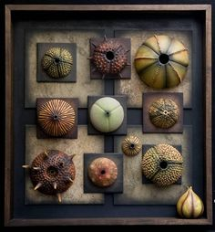 Andy Rogers, wall pieces, ceramic