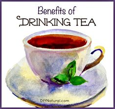 The Many Benefits of Drinking Tea