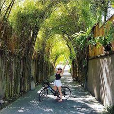The Elysian Bali (@theelysianbali) • Instagram photos and videos