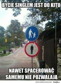 Życie singla Funny Lyrics, Haha, Polish Memes, Funny Mems, Happy Photos, Strange Photos, I Don T Know, Daily Memes, Wtf Funny