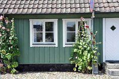 Bilderesultat for grønt hus