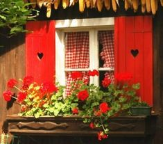 Red gingham curtains-red shutters-red geraniums Love the heart shutters! Cottage Windows, Red Cottage, Garden Windows, Cottage Living, Cozy Cottage, Cottage Style, Gingham Curtains, Red Curtains, Red Shutters