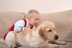 cachorros-criancas-sindrome-down