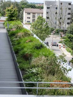 Roof Deck, Roof Top, Architecture Office, Landscape Architecture, Green Roofs, Backyard Landscaping, Sidewalk, Public, Gardening