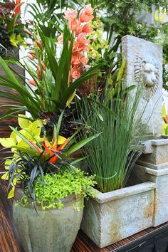 Lion Water Feature Container Garden