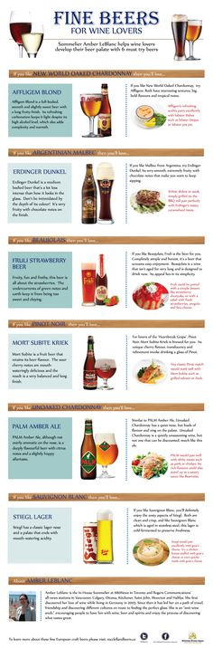 Fine Beers for Wine Lovers - A beer guide for wine drinkers. (Beer infographic)