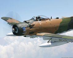 LT America's Skyraider
