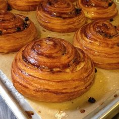 Good morning! #morningpastry #goodmorning #pastry #cinnamonbun #pastries #breakfast #breadsbakery #nyc #unionsquare #yum #instagood #instafood #Padgram