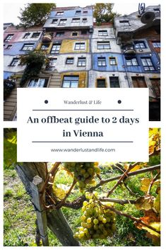 How to spend 2 days in Vienna| Quirky thing to do in Vienna| Offbeat Vienna| Austria #vienna #quirkyvienna #2daysinvienna