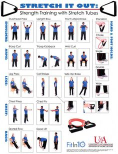 basic stretches diagram  workout tip 2  workout chart