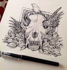 Skull Wolf Head Drawings - Bing images