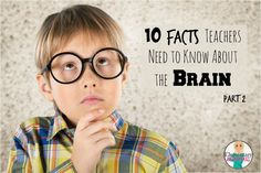 10 Facts Teachers Need to Know About the Brain (Part 2)