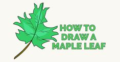 Daisy Drawing, Simple Flower Drawing, Flower Drawing Tutorials, Drawing Tutorials For Kids, Leaf Drawing, Nature Drawing, Plant Drawing, Drawing Ideas, Sketch Ideas