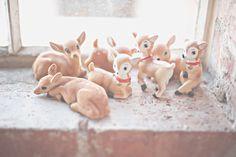 Little deer collection