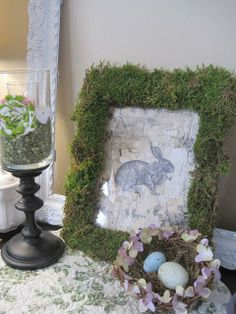 Birch Bark Moss French Bunny Picture