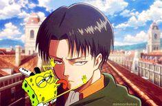 Ahhaha I can't take it Attack on Titan, Levi