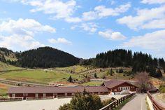 Raiul din munti: Cheile Gradistei Visit Romania, Mansions, House Styles, Travel, Home, Viajes, Manor Houses, Villas, Ad Home