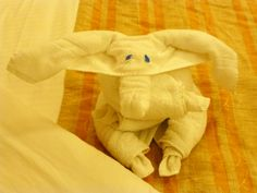 Love these cute little towel animals!