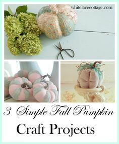 Cute fall crafty ideas. I'm totally inspired to get my craft on! Love this site! whitelacecottage.com