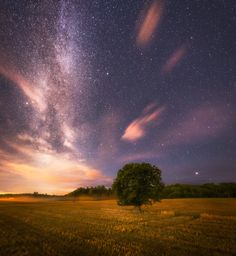 Sky Dance - A field five mins from where I live. Ringerike, Norway.  Pano from…