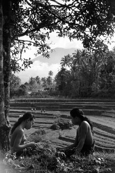 Two young Balinese beauties rest by rice paddies under the sacred mountain Gunung Agung near the village of Iseh Bali Girls, Inle Lake, Under The Shadow, Magnum Photos, Vintage Pictures, Vintage Photographs, Black And White Photography, Old Photos, Portrait Photography
