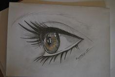 Mein erstes Auge !