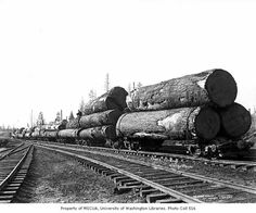 Crew member sitting on log train, with locomotive in distance, Coats-Fordney Lumber Company, near Aberdeen, ca. Logging Equipment, Heavy Equipment, Train Posters, Forest Pictures, Wood Logs, University Of Washington, Landscape Wallpaper, Aberdeen, Vintage Photography