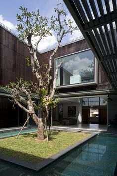 Centennial Tree House with energizing courtyard in Singapore