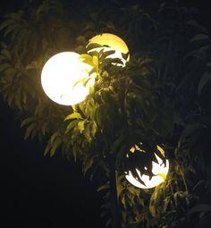 Lampu. #lights #nature #ugm #jogjakarta