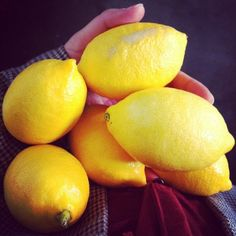 if life gives u lemons