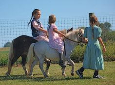 Amish girls and Ponies