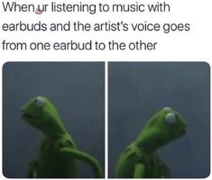 Love me some Kermit memes Stupid Funny Memes, Funny Relatable Memes, Funny Posts, Funny Quotes, Funny Stuff, Funny Laugh, Funny Troll, Relatable Posts, Funny Gifs