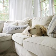 The perfect couch is per bliss