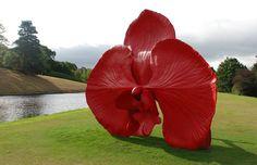 MARC QUINN http://www.widewalls.ch/artist/marc-quinn/ #MarcQuinn #contemporaryart #sculptures