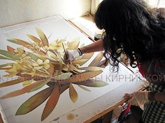 http://www.gifts.batik-gallery.com.ua/?action=issue-showAll