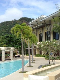Pico De Loro Philippines Spaces, Mansions, House Styles, Nature, People, Travel, Home Decor, Parrot, Naturaleza
